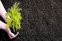 அரசு மானியமாக வழங்கும் உரங்களை தனியாருக்கு விற்றால் சிறை தண்டனை - வேளாண் துறை எச்சரிக்கை!