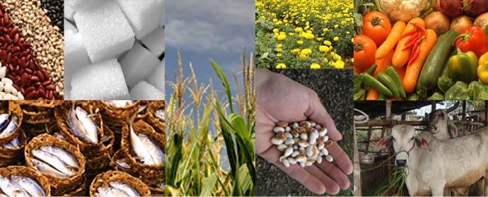National Agri Development