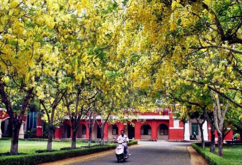TNAU Campus