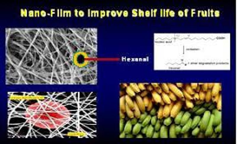 nano formulation
