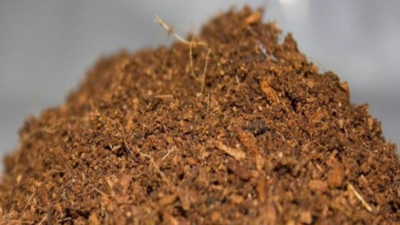 composted coir pith