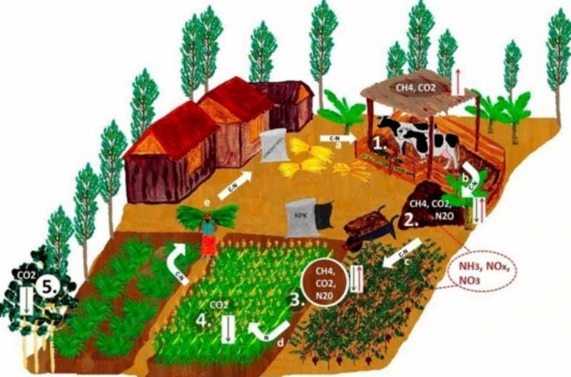 Intrgrated Farming Model