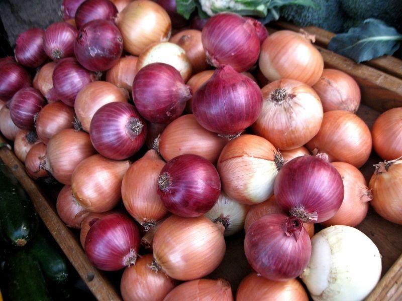 Dindukkal Onion Exporters Commission Mandi Traders Association