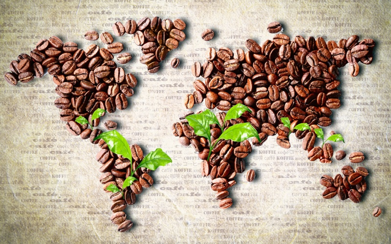 Coffee Beans Growing World Wide