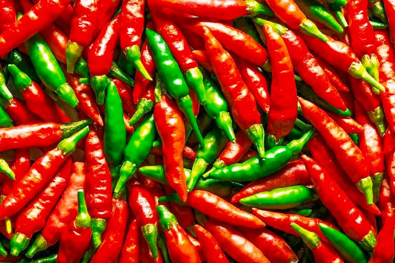green and red chillies