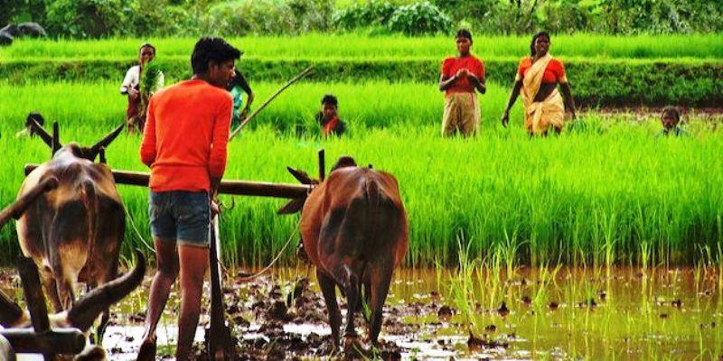 TN agriculture Farming