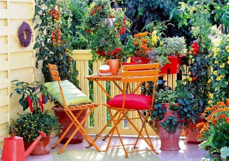 Beautiful Balcony Garden
