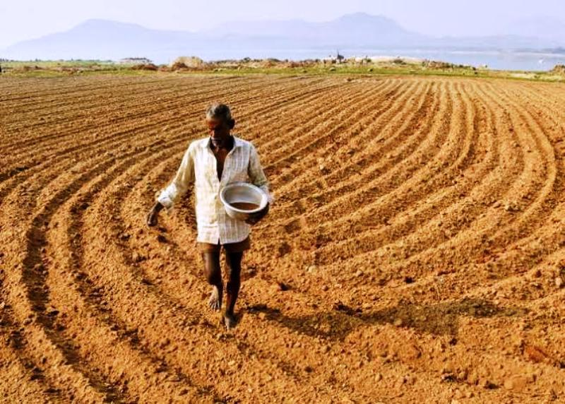 Shortage of Farmer