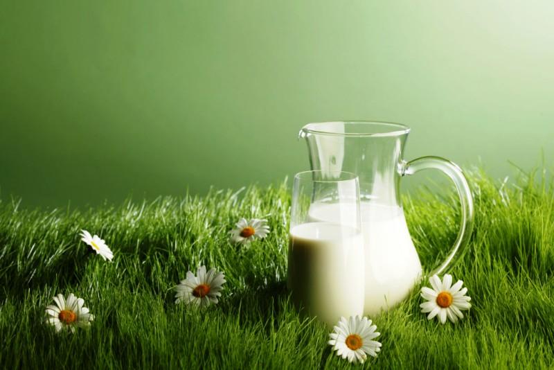 Health Benefits of Milk