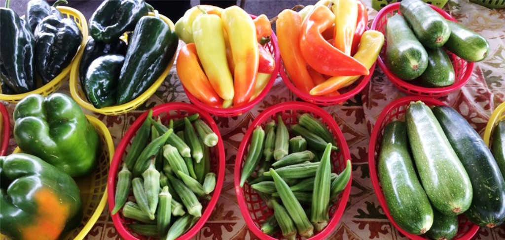 Vegetables seeds with 100% subsidy