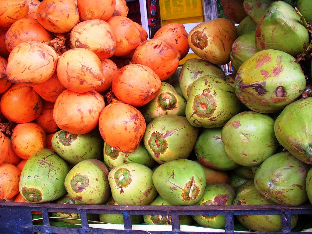 Variety of tender coconut