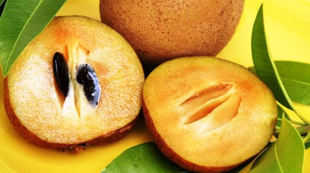 natural fructose and sucrose content in sapota