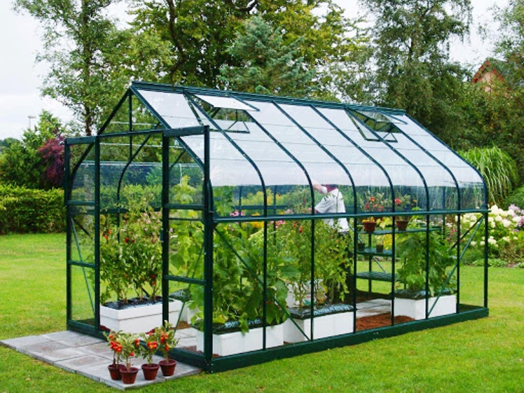 Green house workshop organized by EDII