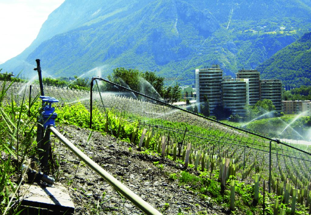 best way to over dryness sprinkler Irrigation