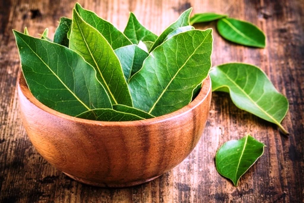 Health Benefits of Bay Leaf